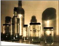 Gnomonic portraits bottles